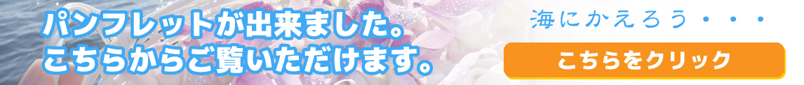 沖縄海洋散骨センターパンフレット